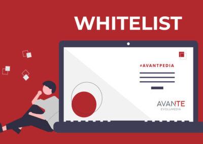 ¿Sabes qué es una Whitelist?